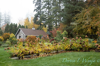 Dietrick fall garden_2045
