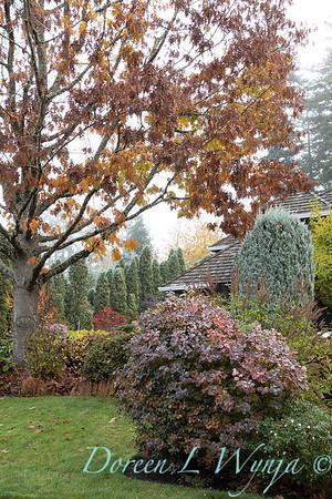 Dietrick fall garden_2001