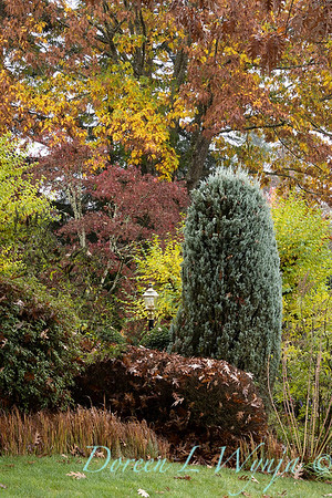 Dietrick fall garden_2009