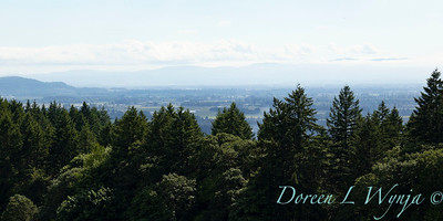 Domaine Serene grounds_1055