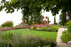 Lawn Landscape Cottage Garden_004