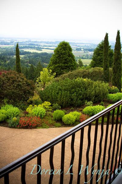 Sedum Evergreen Landscape_001