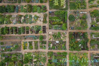 Aerial view Fulton Community Garden_1846
