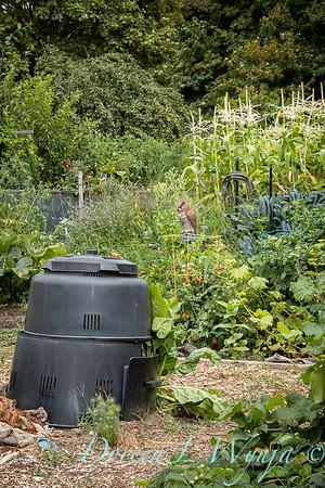 Fulton Community Garden_1808