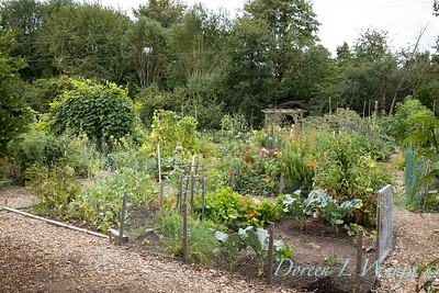 Fulton Community Garden_1804