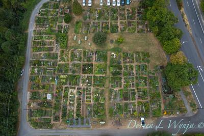 Aerial view Fulton Community Garden_1841