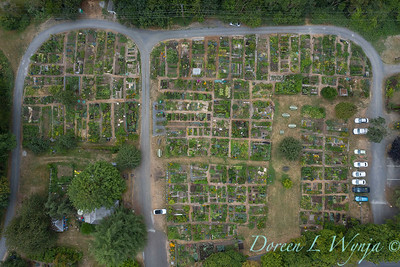 Aerial view Fulton Community Garden_1840