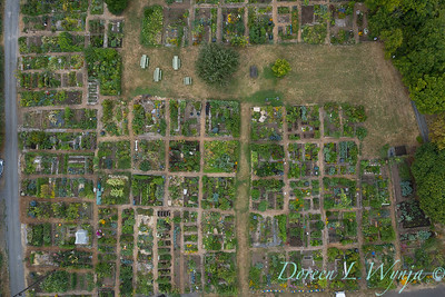 Aerial view Fulton Community Garden_1842