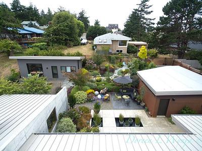 Janine & Terry's garden_1223