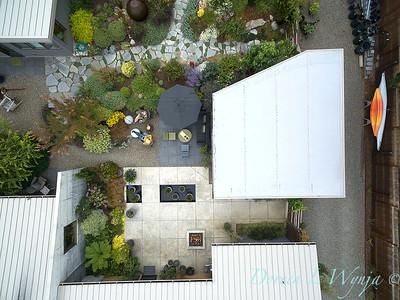 Janine & Terry's garden_1227