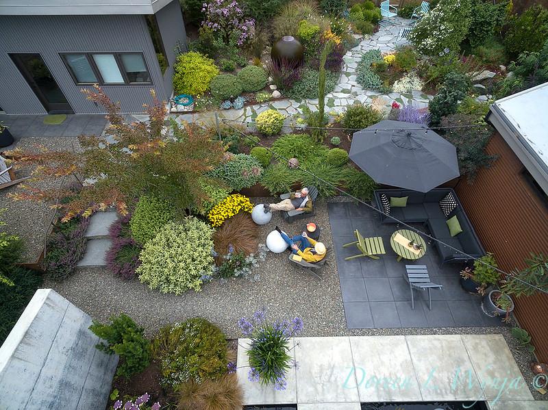 Janine & Terry's garden_1228