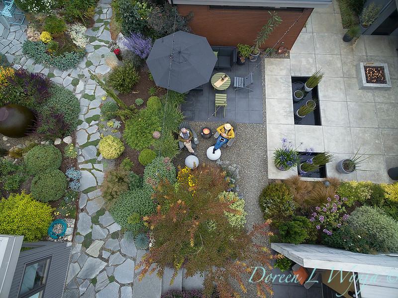 Janine & Terry's garden_1235