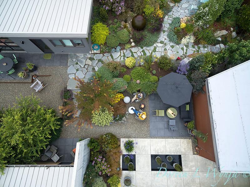Janine & Terry's garden_1225