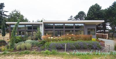 Janine & Terry's garden_1221