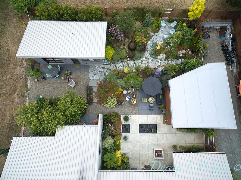 Janine & Terry's garden_1224