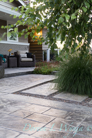 Betula nigra 'Cully' - Pennisetum alopecuroides 'Hameln' - Persicaria amplexicaulis 'Firetail' - patio hardscaping_0564