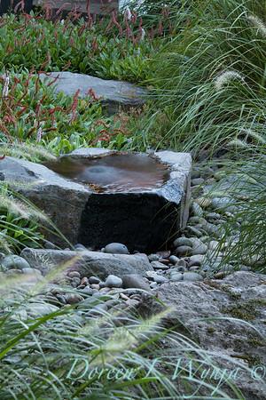 Pennisetum alopecuroides 'Hameln' - Persicaria amplexicaulis 'Firetail' - water feature_0577