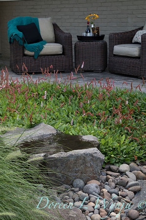 Persicaria amplexicaulis 'Firetail' - patio setting_0579