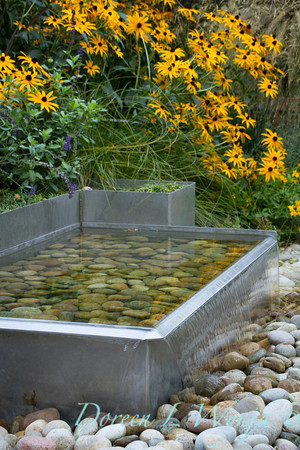 Metal water feature Rudbeckia Goldsturm_2096