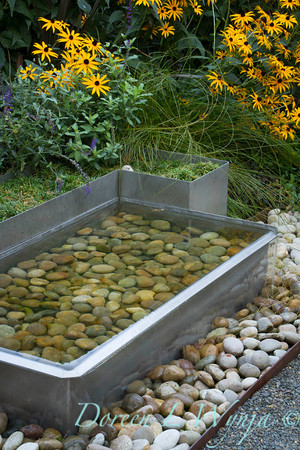 Metal water feature Rudbeckia Goldsturm_2094