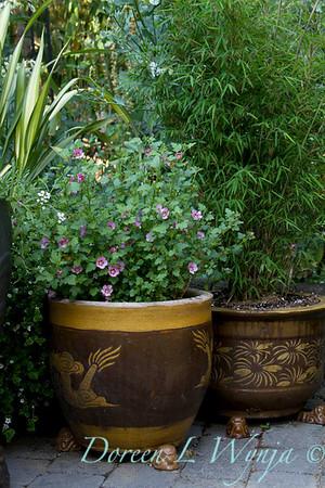 Darcy Garden_040