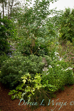 Darcy Garden_074