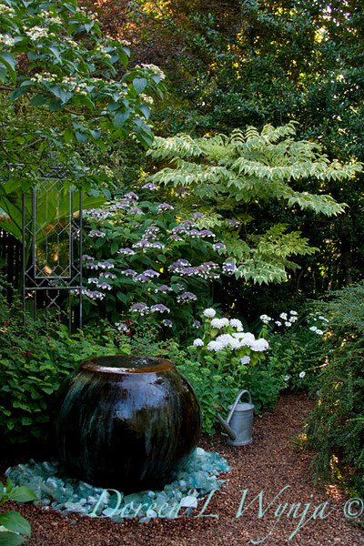 Darcy Garden_006