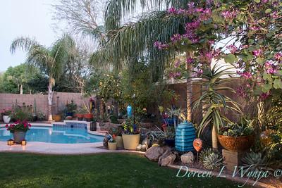 D & M in the desert_1267