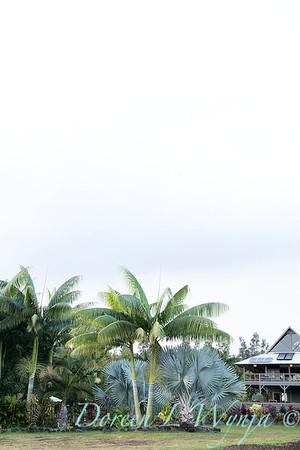 Welsch - Davenport Hawaii_1034