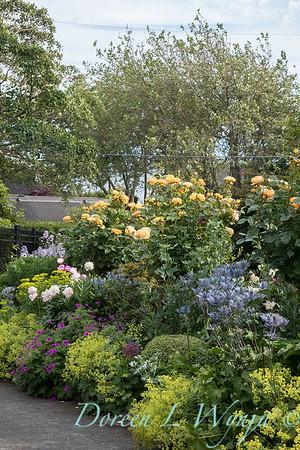 Lily Maxwell - garden designer_7504