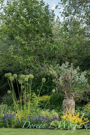 Lily Maxwell - garden designer_7521