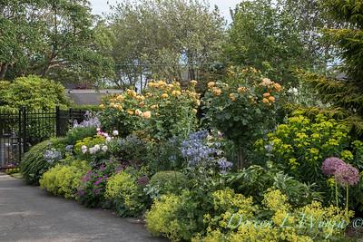 Lily Maxwell - garden designer_7503