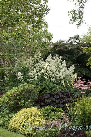 Lily Maxwell - garden designer_7527