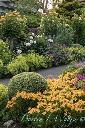 Lily Maxwell - garden designer_7501