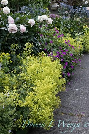 Lily Maxwell - garden designer_7510
