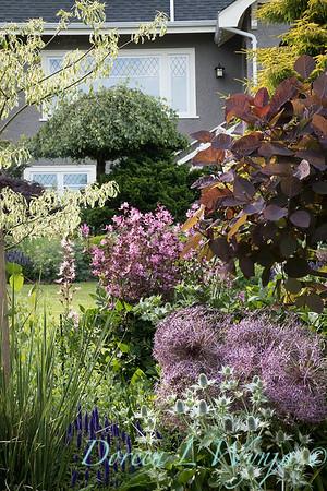Lily Maxwell - garden designer_7540