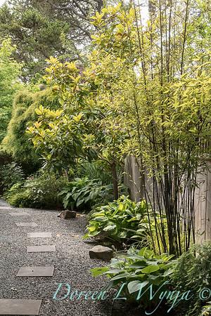 Paul Murphy - a Sidney garden_7660