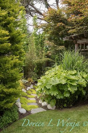 Paul Murphy - a Sidney garden_7645