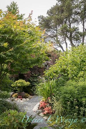 Paul Murphy - a Sidney garden_7644