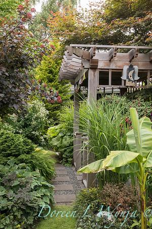 Paul Murphy - a Sidney garden_7658