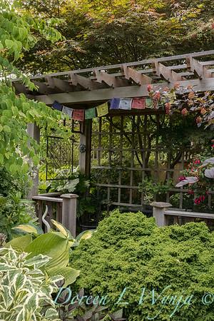Paul Murphy - a Sidney garden_7648
