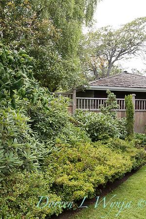 Paul Murphy - a Sidney garden_7641