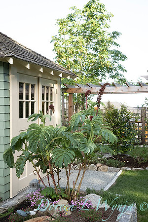 Suzanne & Pat Summer Cottage_6321