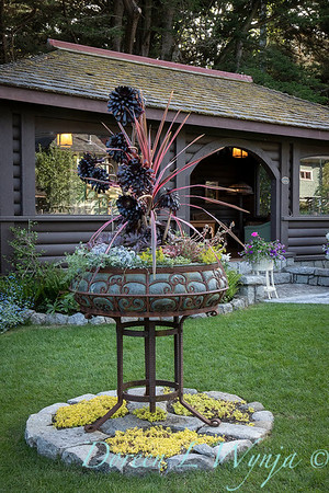 Suzanne & Pat Summer Cottage_6325