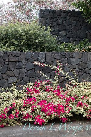 Giest Garden_9266