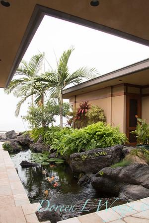 Koi Pond - Tropical landscape_3522