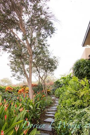 Tropical garden path - Heliconia psittacorum - Phymatosorus fern_3532