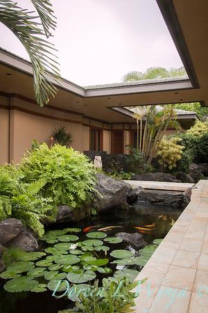Koi Pond - Tropical landscape_3527