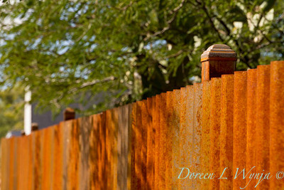 Corrugated rusty metal fencing_5782