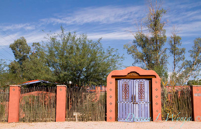 Ocotillo fence Purple doors_8409